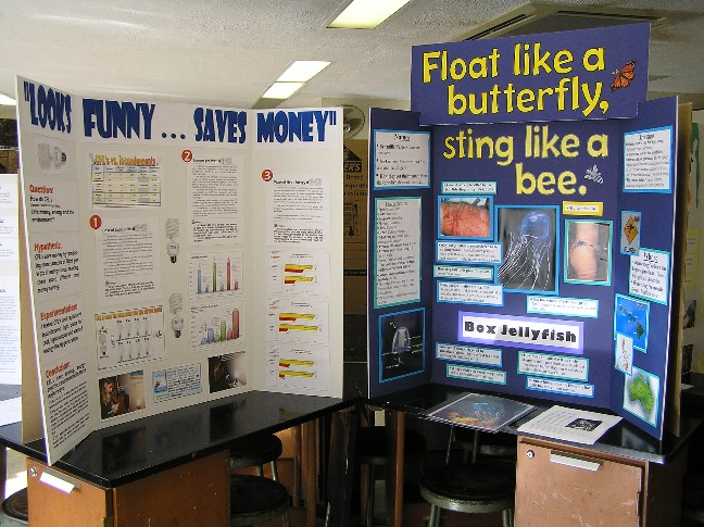 Science Fair Tri Fold Example Jolivibramusicco - Unique science fair tri fold ideas